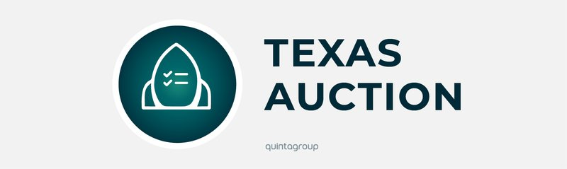 Texas Auction SaaS